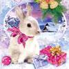 Новый год 2011, год кролика, китайский гороскоп